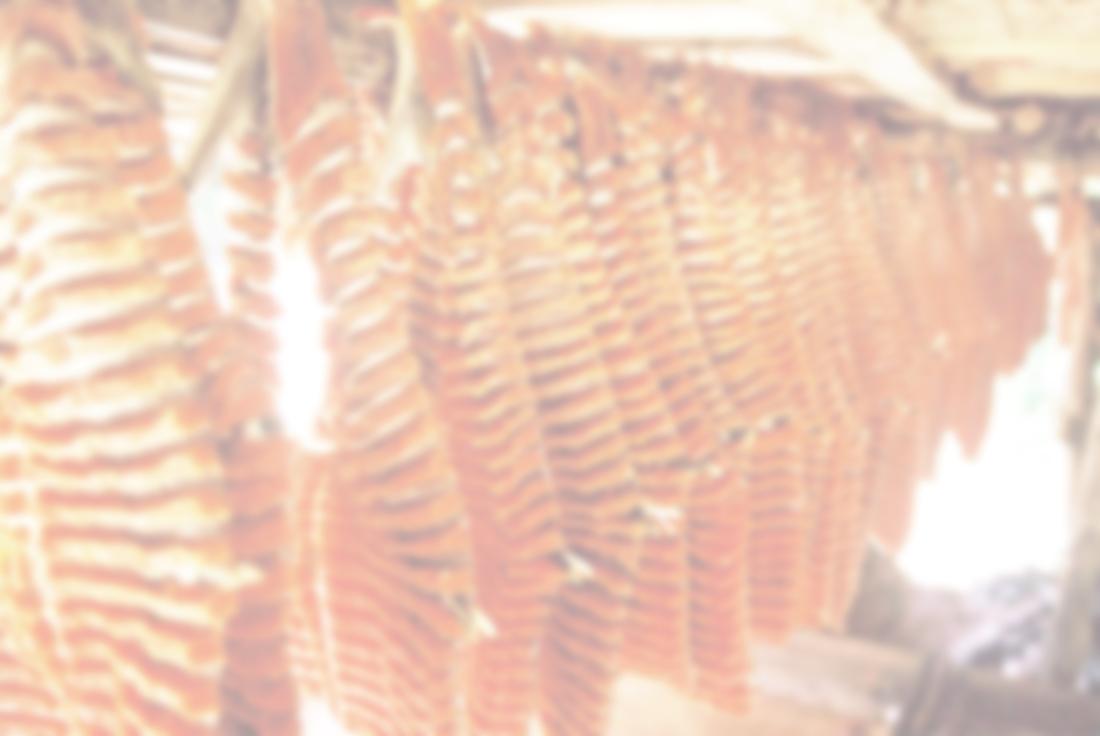 salmonbkrd